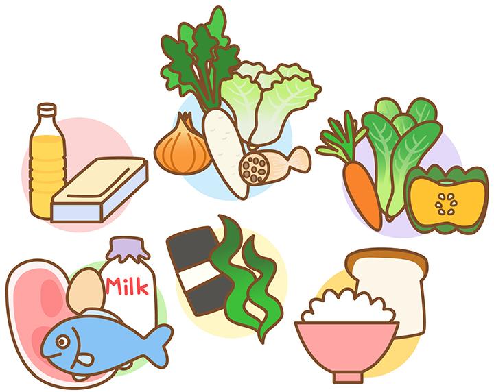 栄養素のイメージ